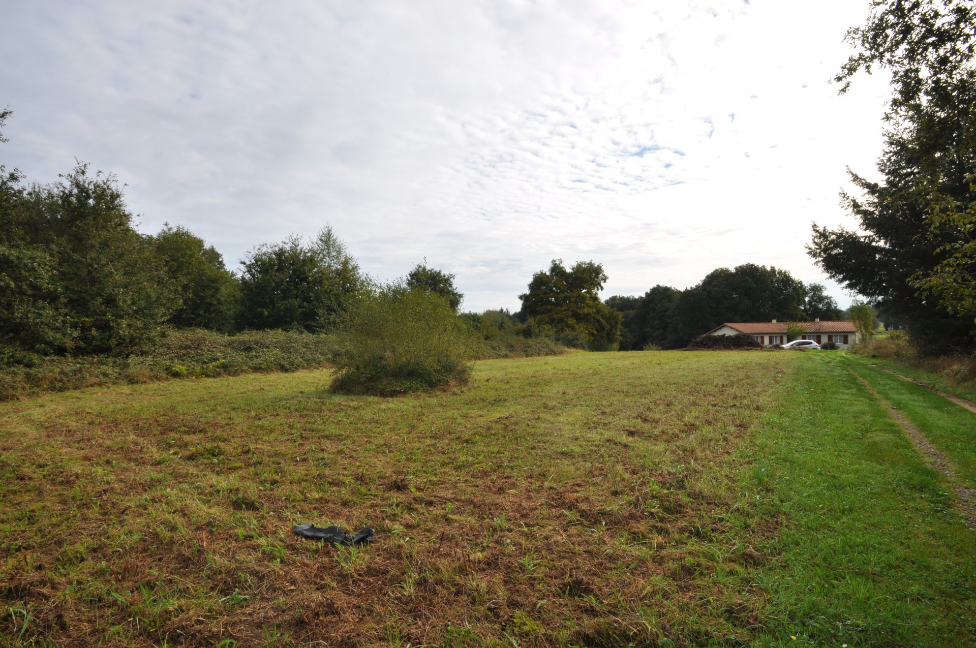 Building land for sale on the edge of a calm village