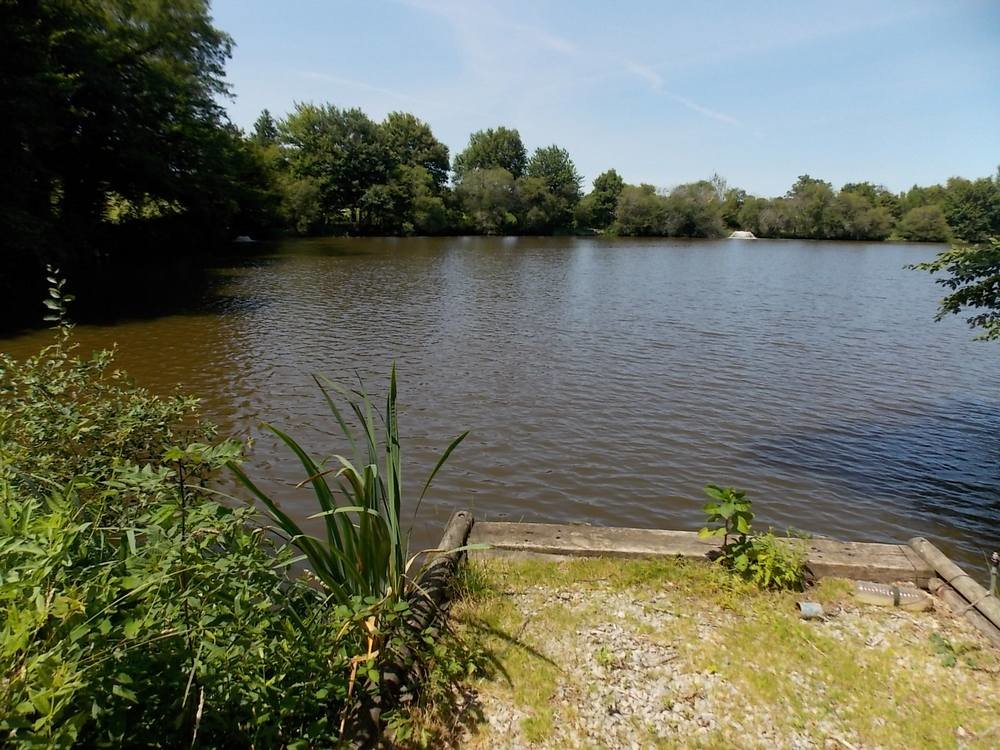 Fantastic Carp fishing lakes with 4 properties providing income