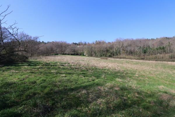 SARLAT, IN A BEAUTIFUL LOCATION, SUPERB 3.9 ACRES BUILDING PLOT !!