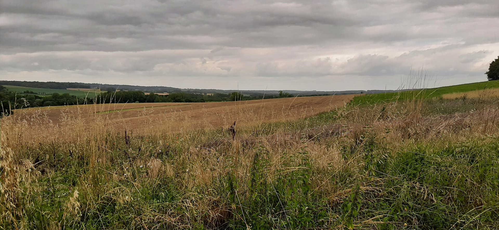 Plot of land with planning permission