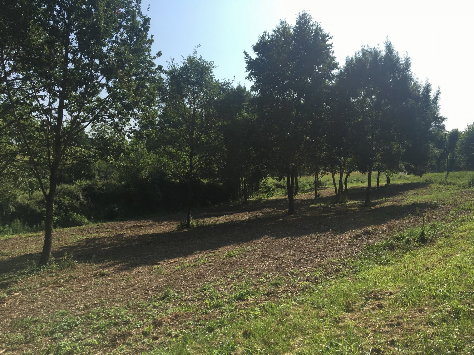 On the outskirts of a village with shops, 2612 m² building plot
