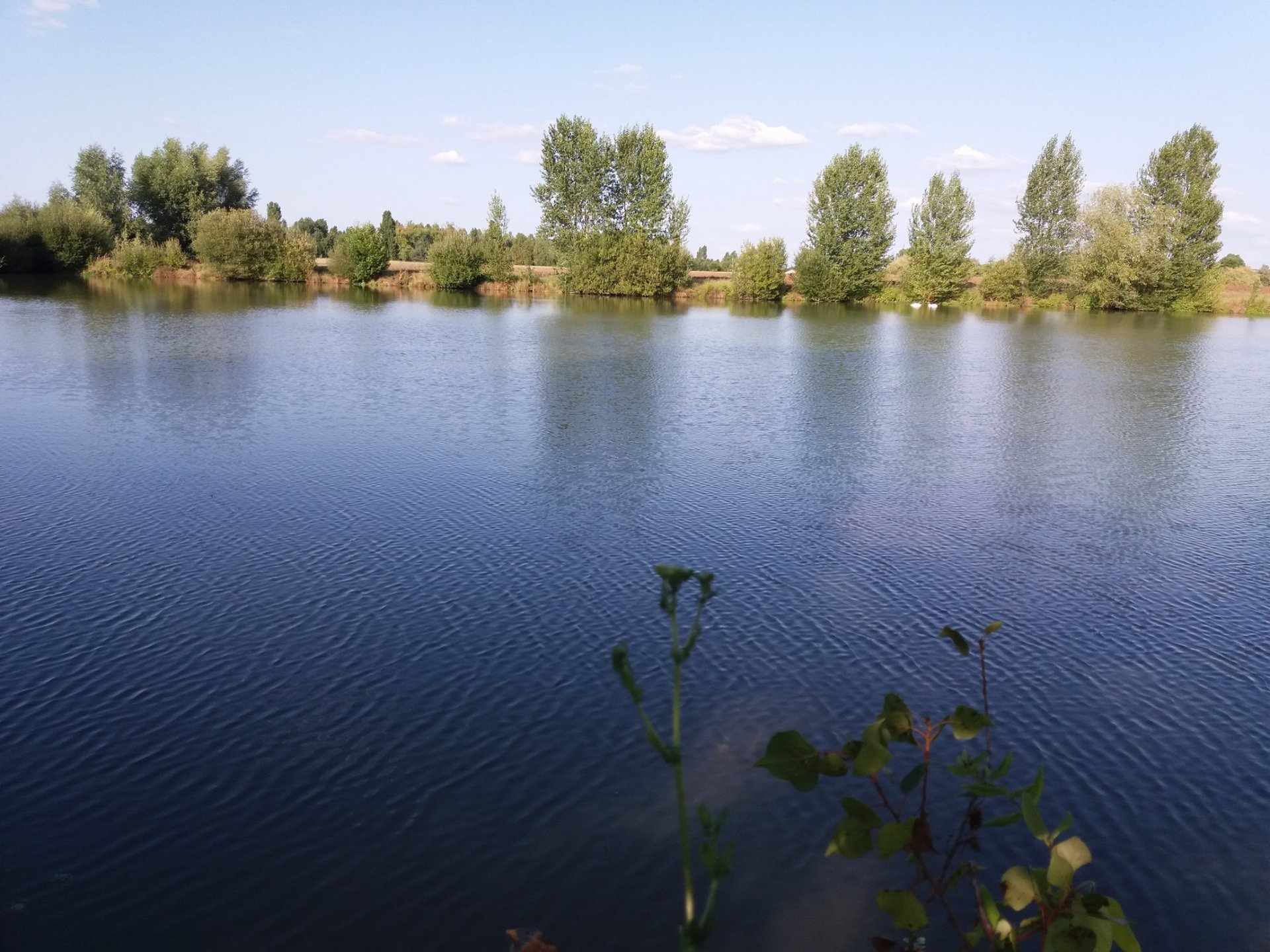 Lake of 7 hectares surrounded with 5 ha of land and a barn to restore