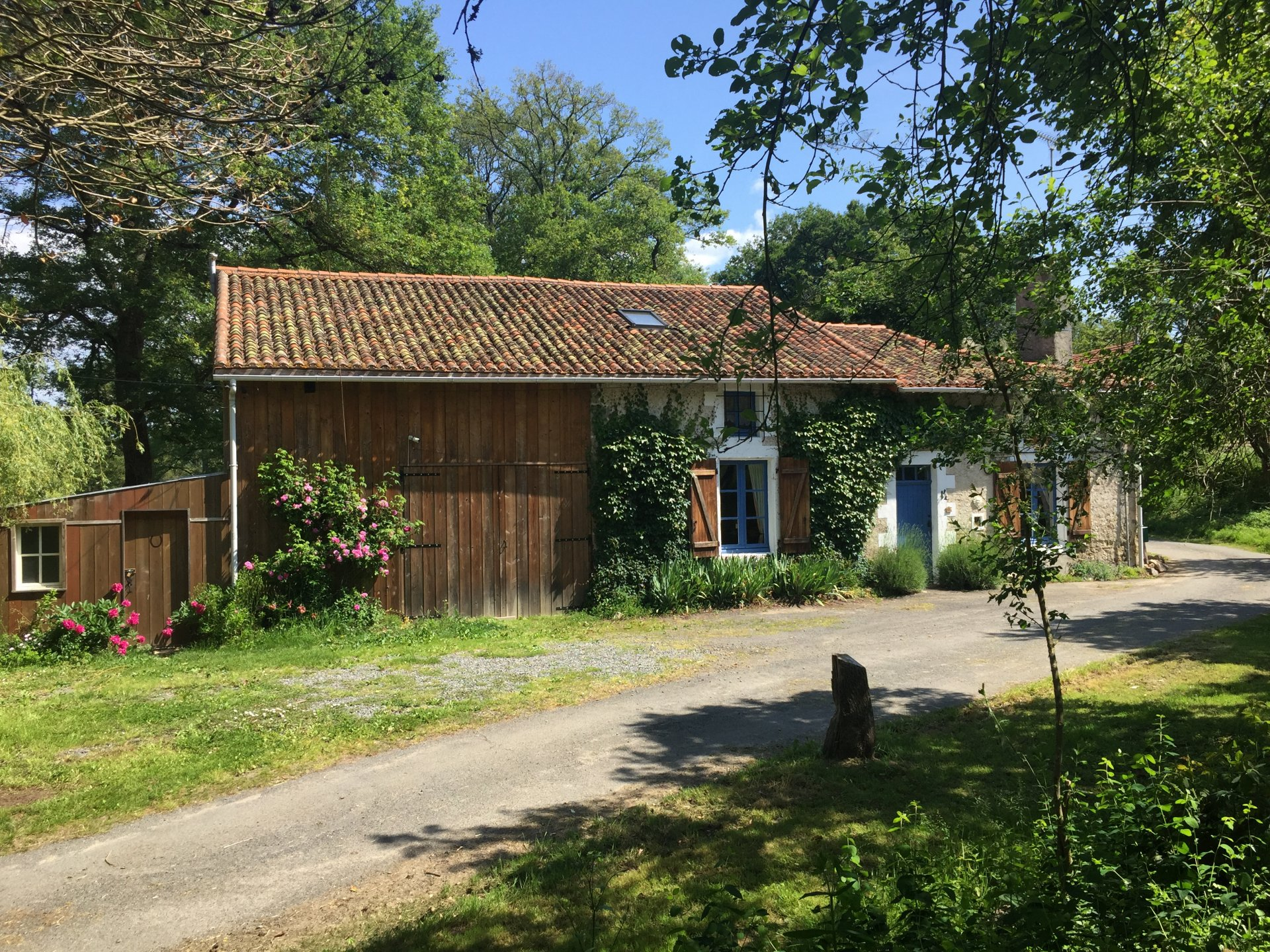 Idylllic setting for this 3 bedroom renovated farm house with land