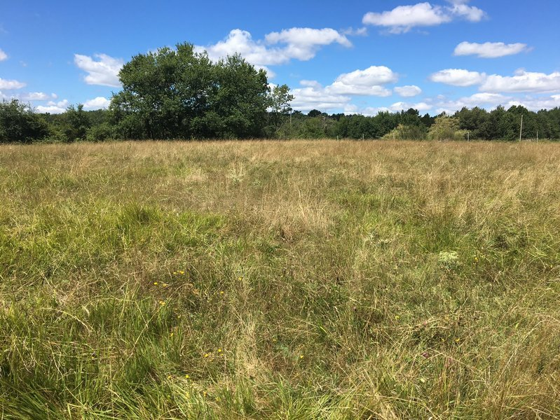 1632 m² building plot in a pretty location