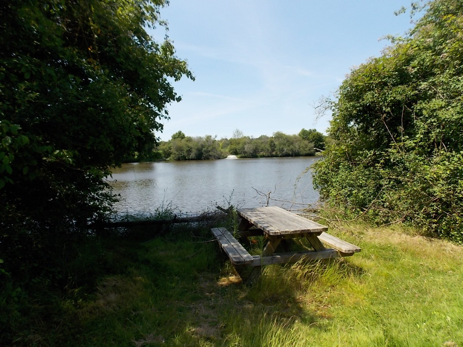 14 hectare property with three homes and three lakes