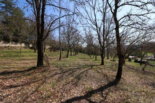 15min FROM SARLAT et ONLY 5 MINUTES AWAY FROM SHOPS AND TOURISTIC SITES, 1 ACRE BUILDING PLOT WITH F